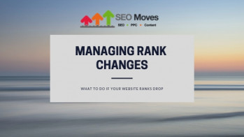 Managing rank changes what to do if your website ranks drop